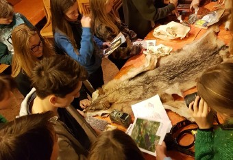 Slovenian pupils get to know big carnivores