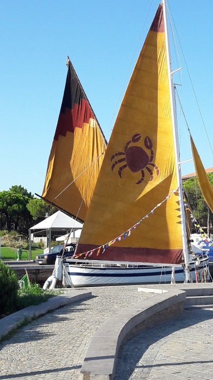 One of Cervia's trademarks: personalized sails